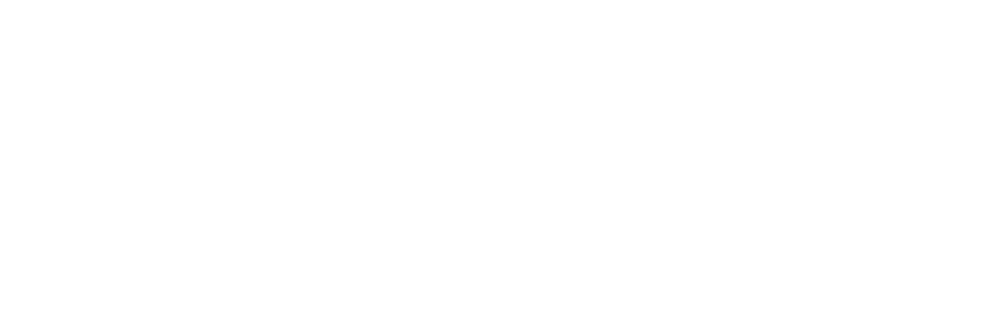 St. Vincent de Paul Chicago